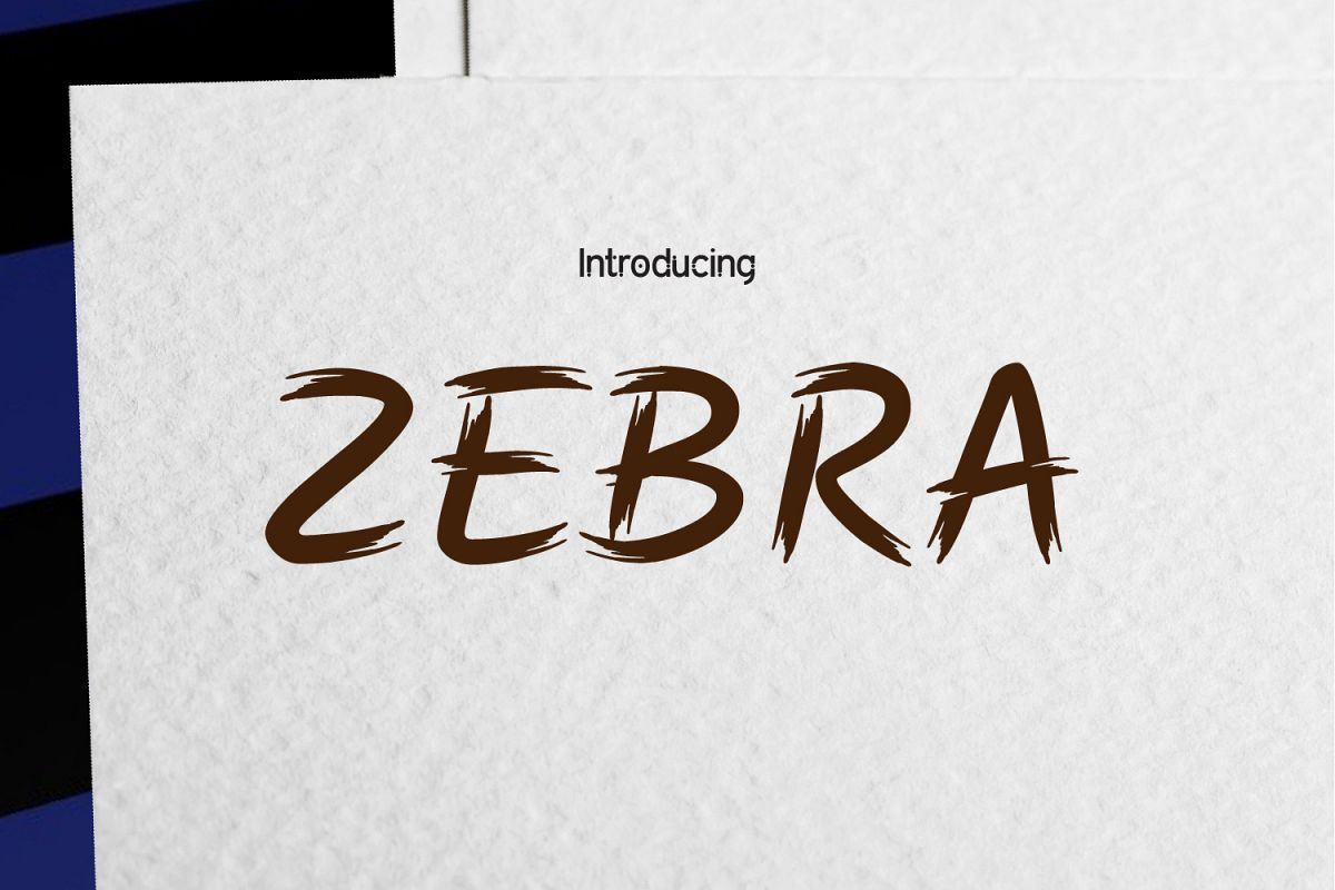 ZEBRA Clean Brush example image 1