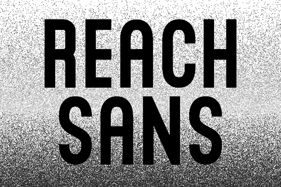 Reach Sans example image 1