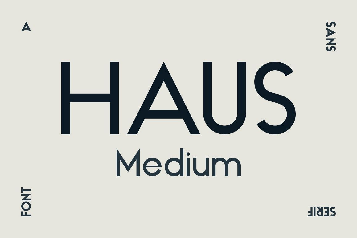 HAUS Sans Medium example image 1