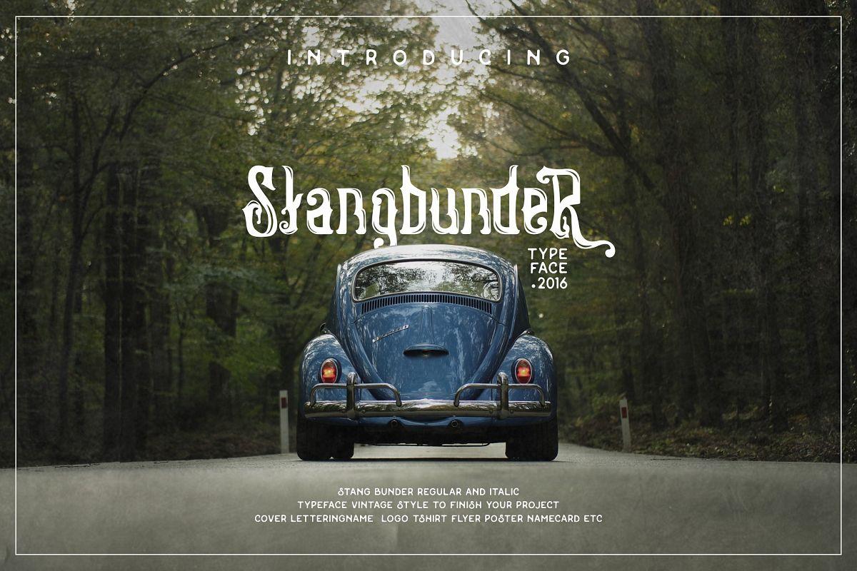 Stangbunder cover