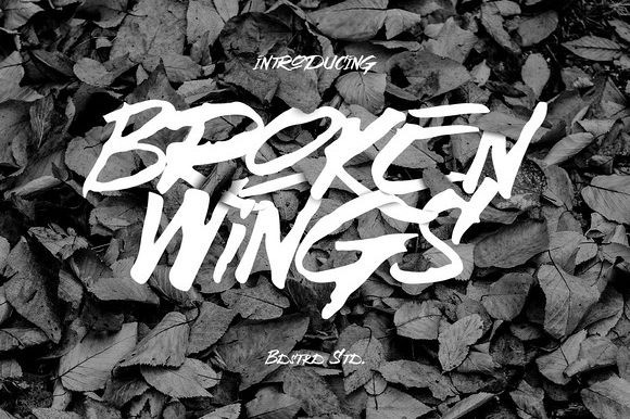 Broken Wings Typeface example image 1