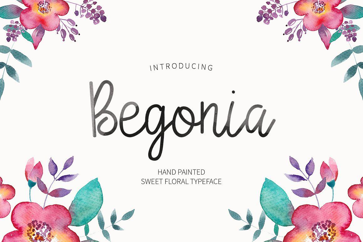 Begonia example image 1