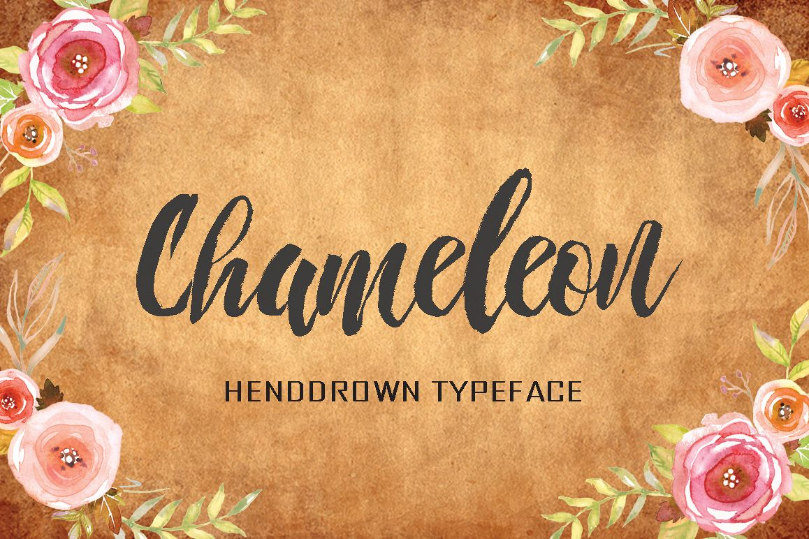 Chameleon example image 1