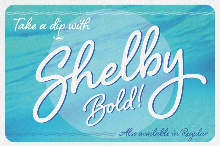 Shelby Bold example image 1
