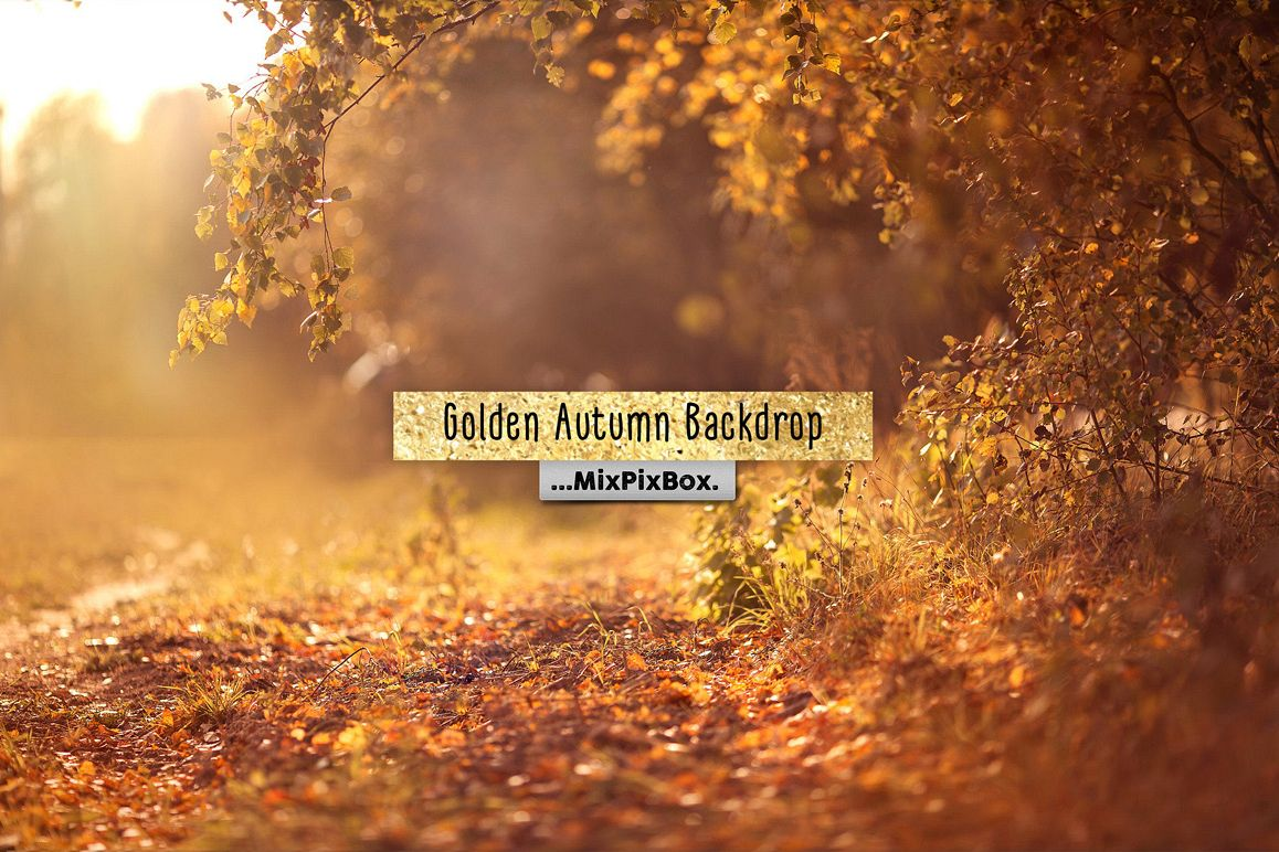 Golden Autumn Backdrop example image 1