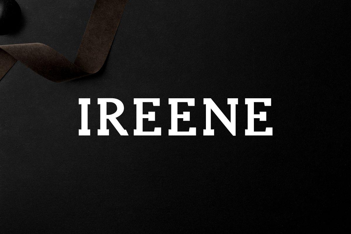 Ireene Serif 3 Font Family Pack example image 1