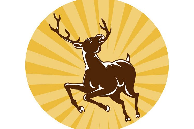 stag deer jumping example image 1