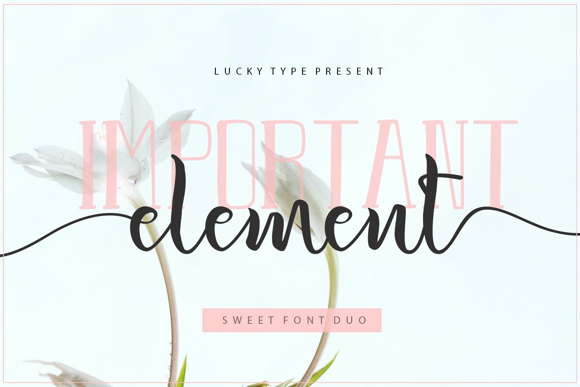 Important Element Font Duo example image 1
