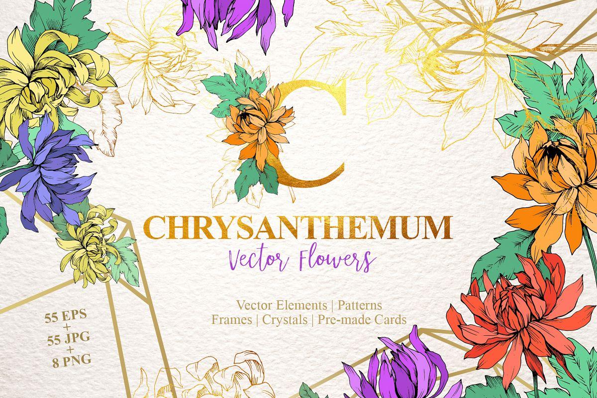 Chrysanthemum Vector Flowers example image 1