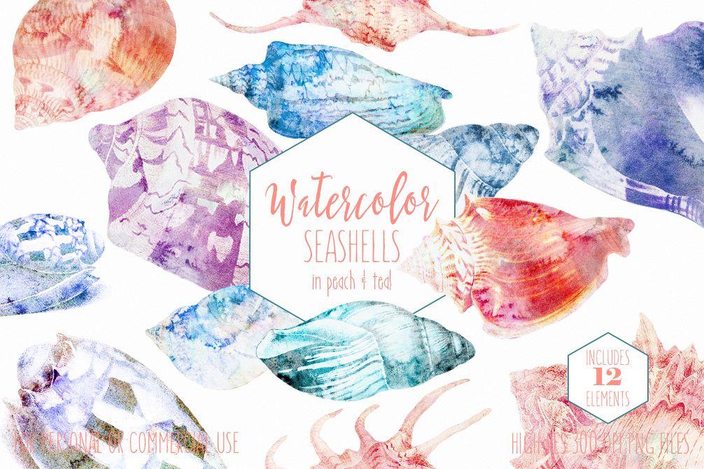 Beach Seashells Ocean Shells Clipart example image 1