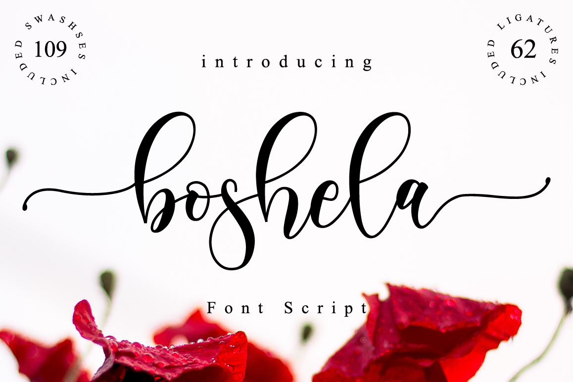 Boshela Script example image 1
