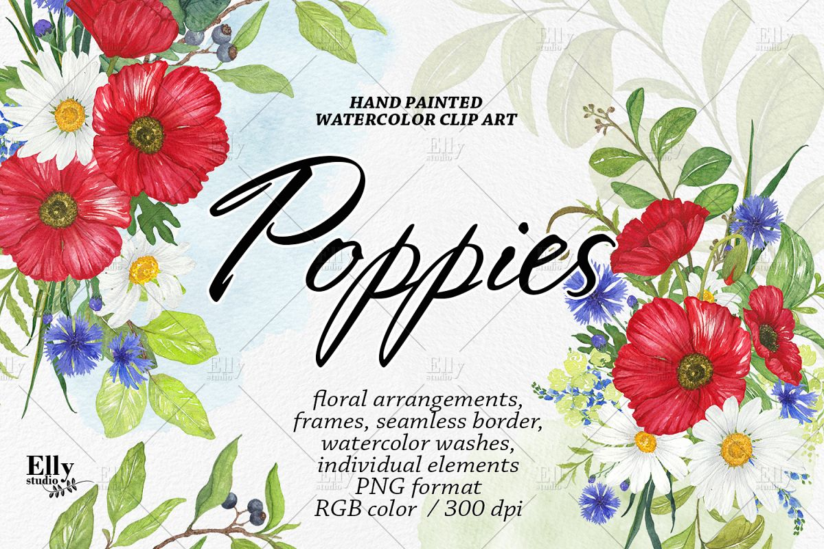 Watercolor Poppies Clipart Summer Flowers