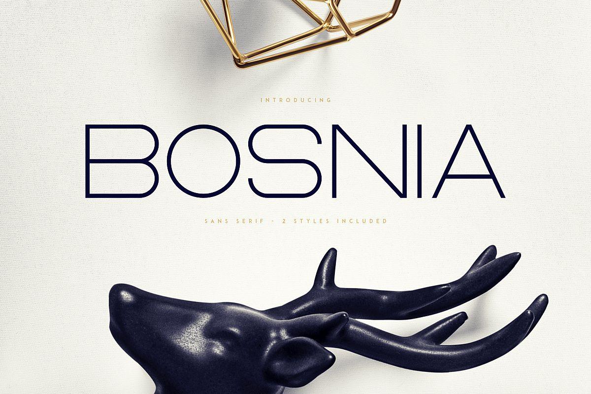 Bosnia - Sans Serif font   2 styles example image 1