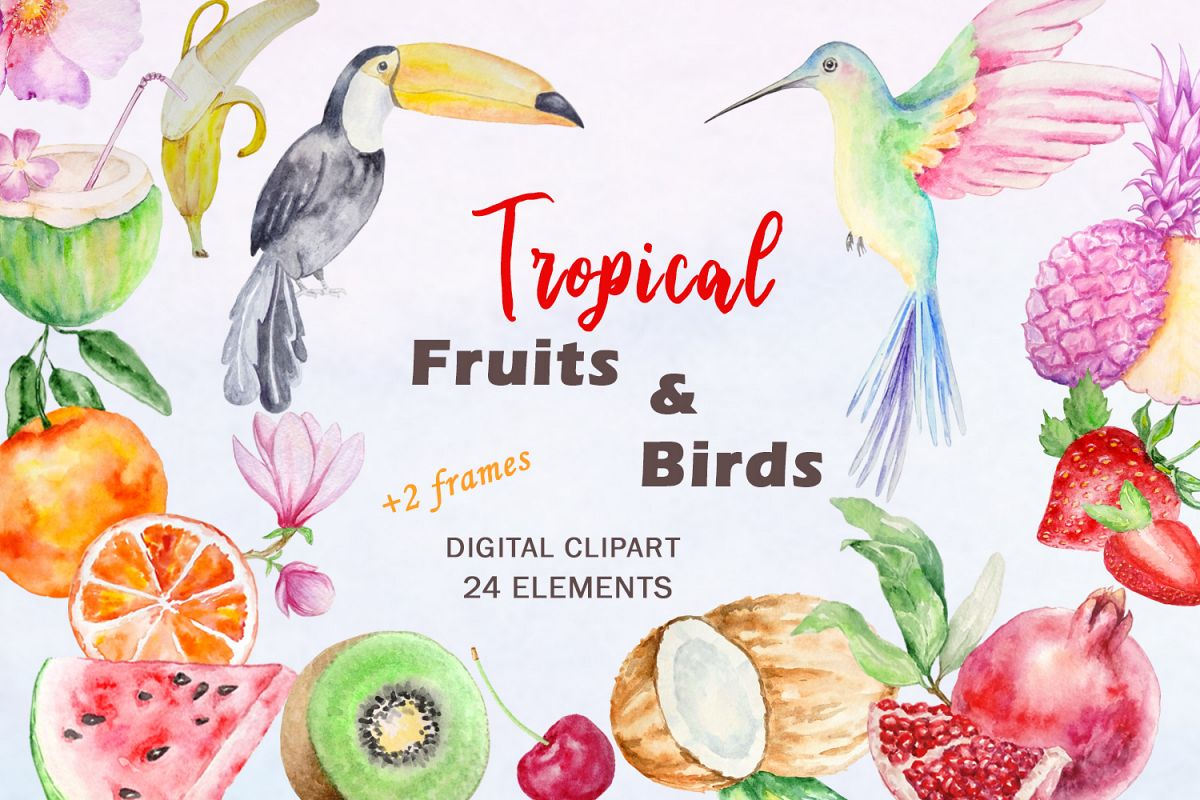 Watercolor Tropical Fruits, Flowers and Birds Clipart Set example image 1