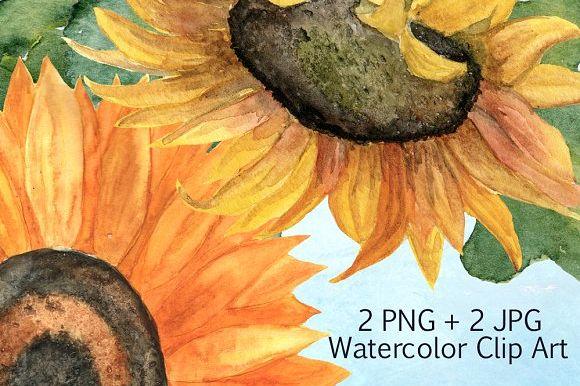 2 JPG + 2 PNG Sunflower Clip Art example image 1