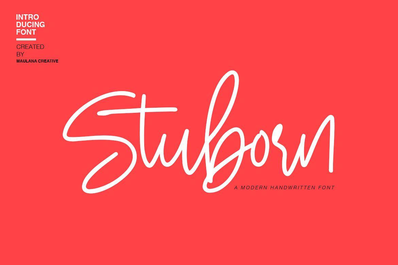 Stuborn - Modern Handwritten Font example image 1