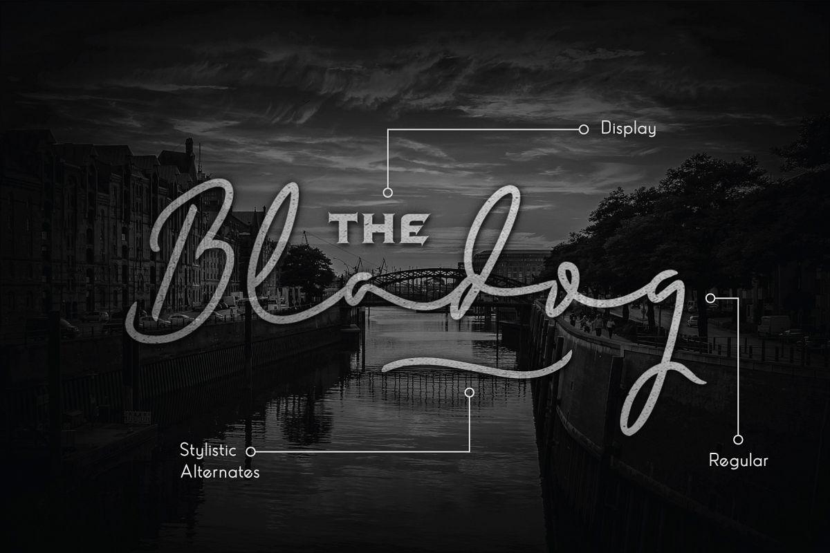 Bladog Script & Display Font Duo example image 1