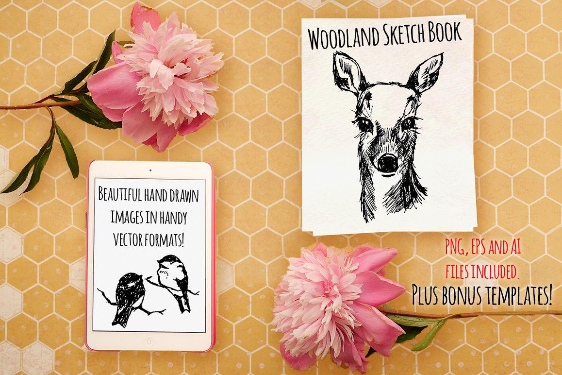 Woodland Animal Sketch Vector Bundle example image 1