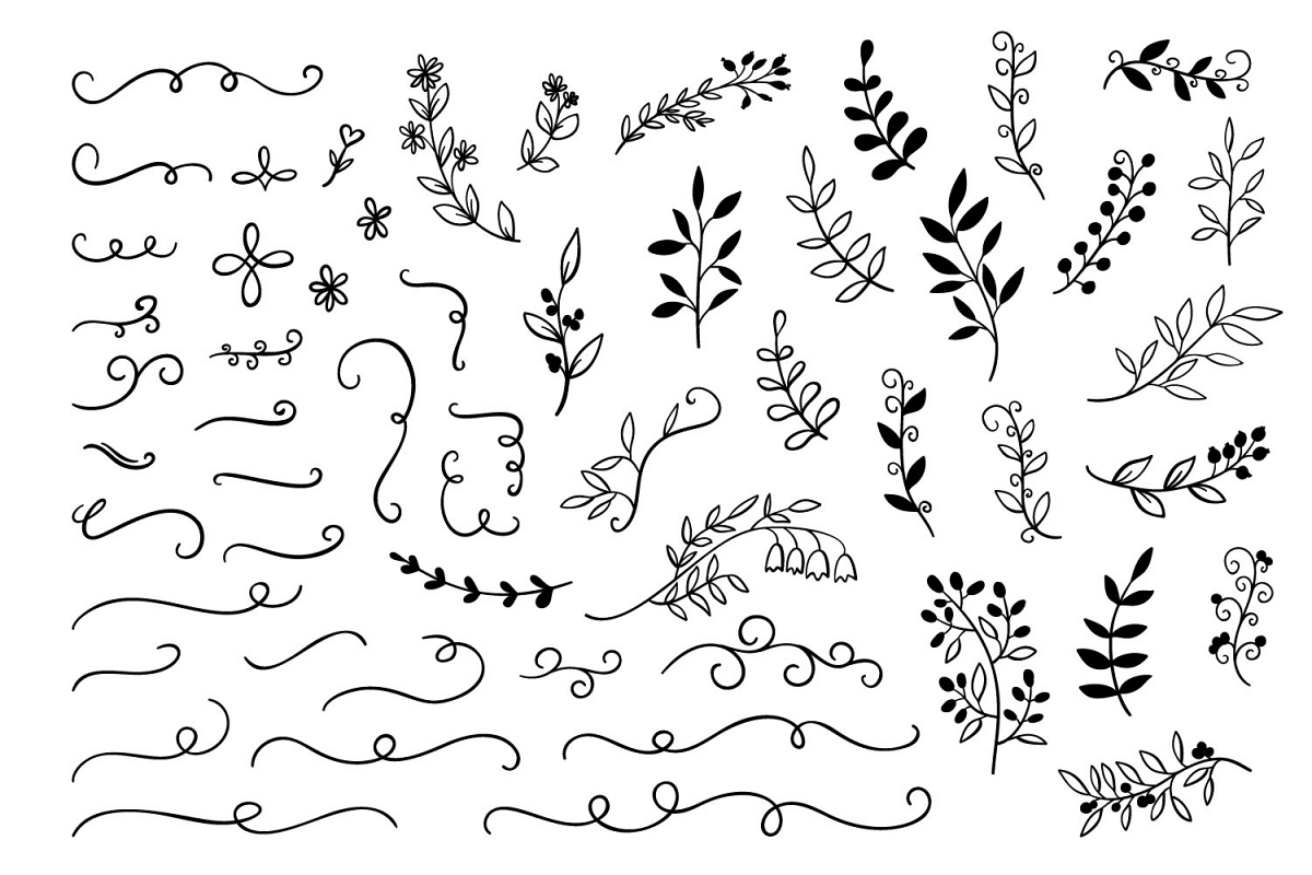 55 hand drawn doodle branches dividers set