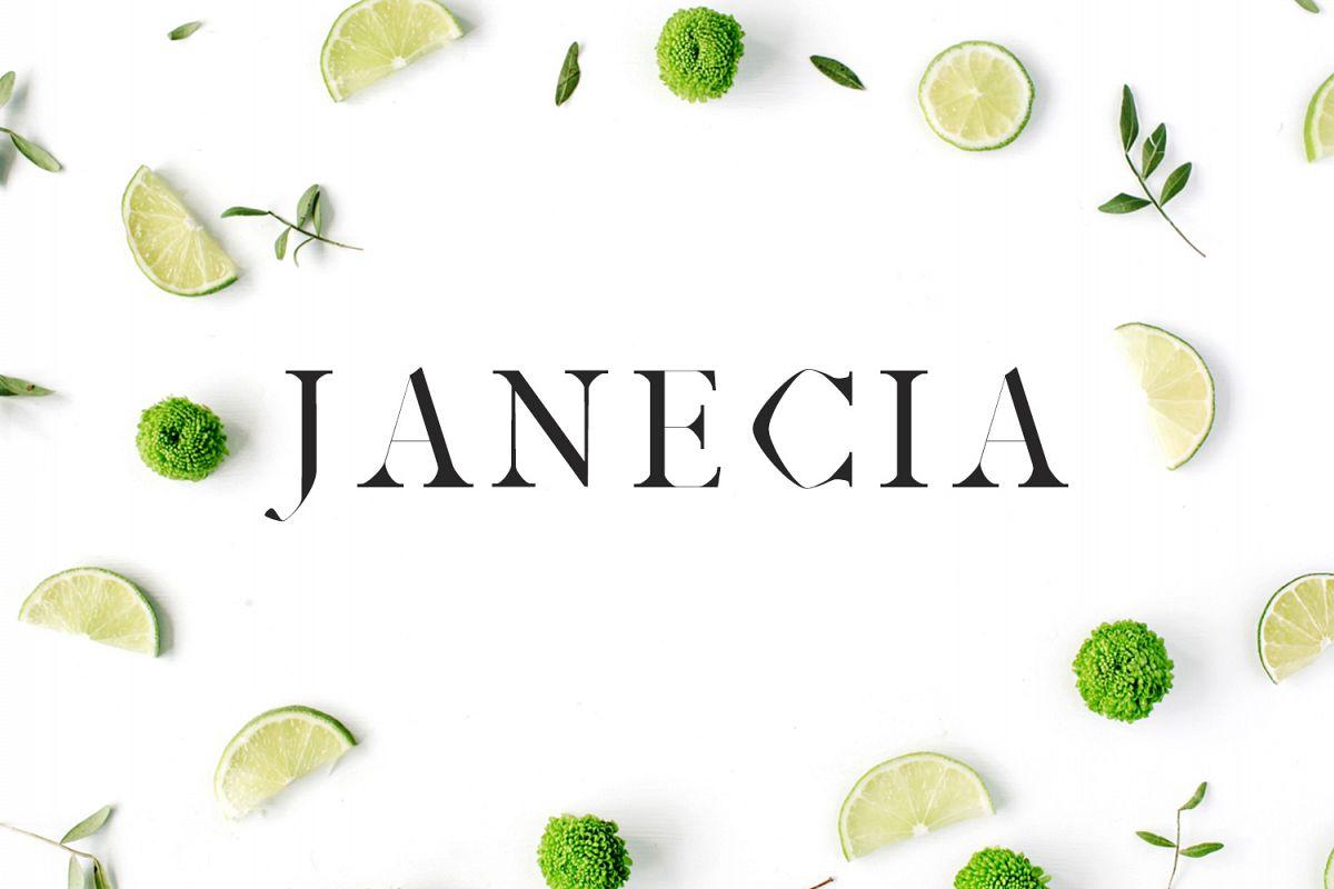 Janecia Serif Typeface example image 1