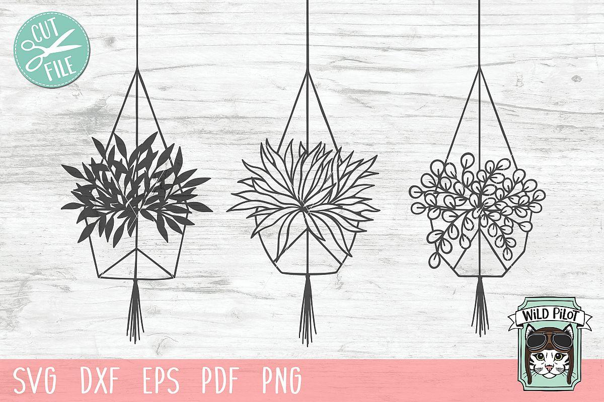 Hanging Plants SVG files, Plants cut files, Planters, Garden example image 1