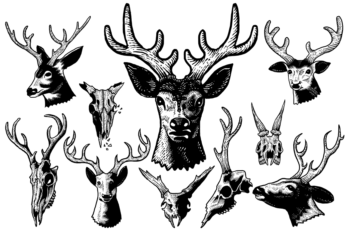Deer head art example image 1