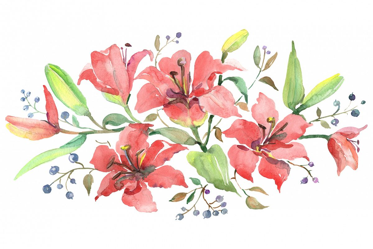 Branch Of Orange Lilies Watercolor Png
