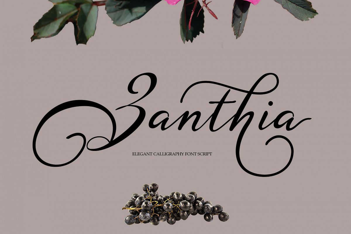 Zanthia Script example image 1