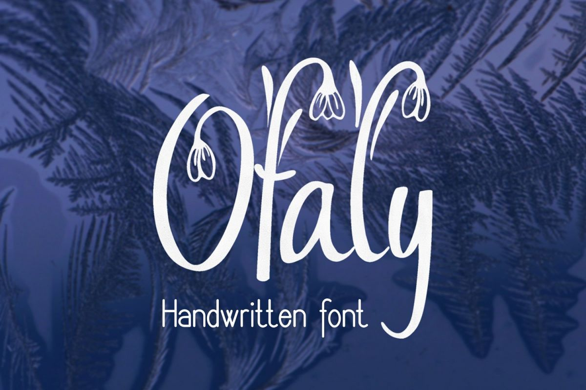 Ofaly Font example image 1