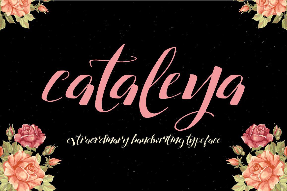 Cataleya Typeface (Full) example image 1