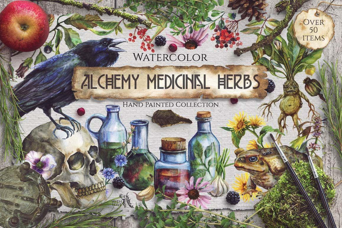 Watercolor Alchemy Medicinal Herbs example image 1