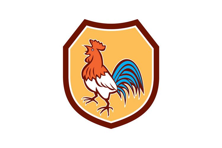 Chicken Rooster Crowing Looking Up Shield Retro example image 1