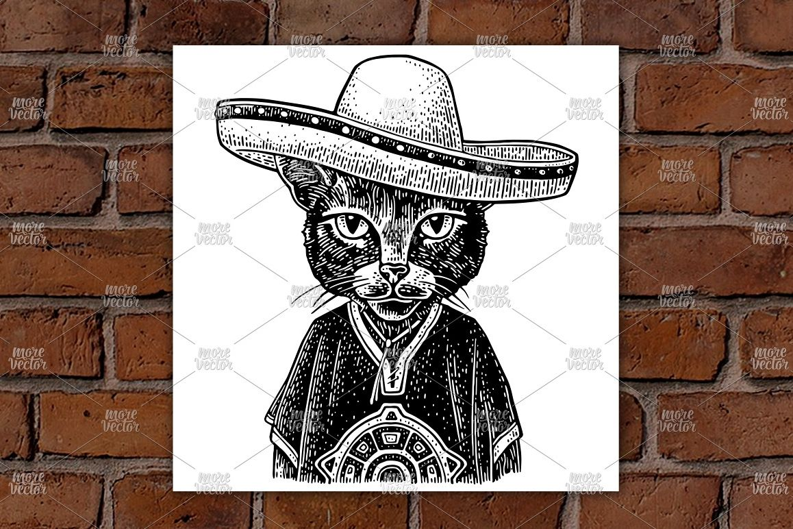 Cat dressed in the poncho, sombrero. Vintage engraving example image 1