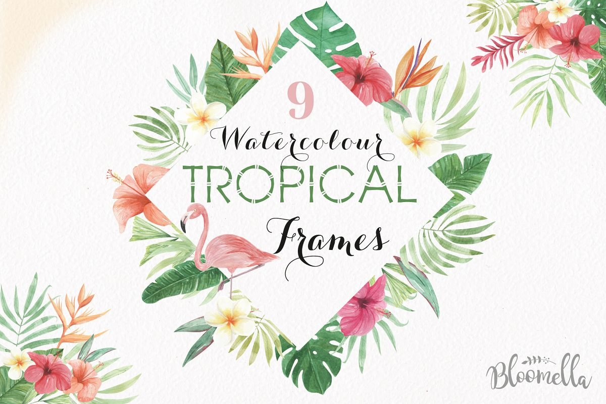 Tropical Watercolor Clipart Frames Border Flamingo Flowers Hibiscus Example Image