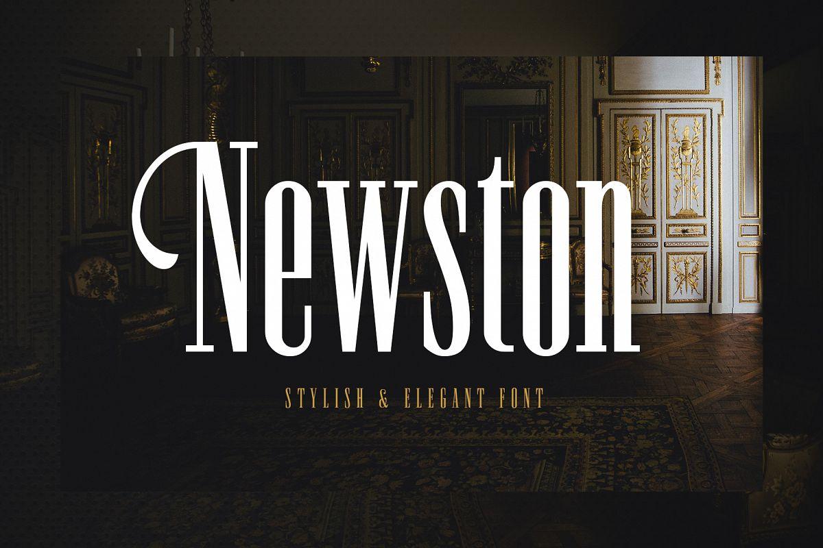 Newston - Stylish Serif Font example image 1