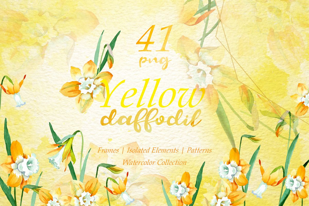 Yellow daffodil Watercolor png example image 1