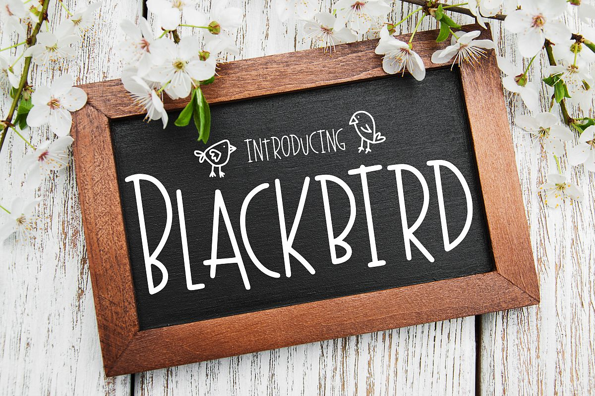 Blackbird example image 1