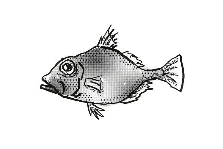 False Dory Australian Fish Cartoon Retro Drawing example image 1