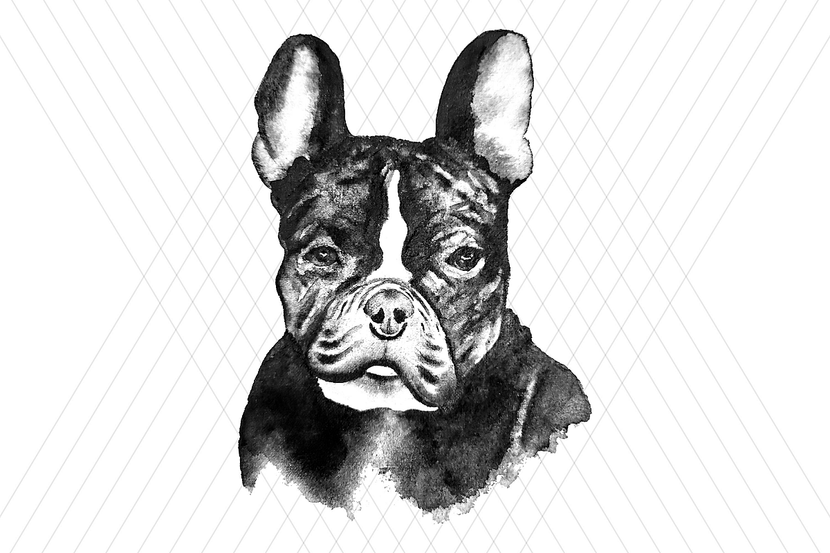 Watercolor DOG clip art example image 1