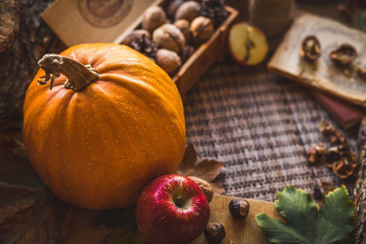 Orange Pumpkin example image 1