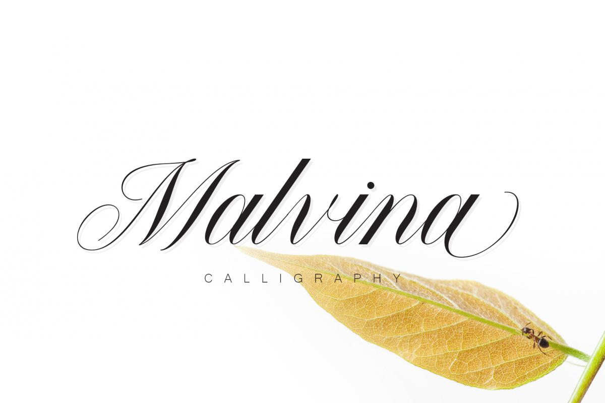 Malvina example image 1
