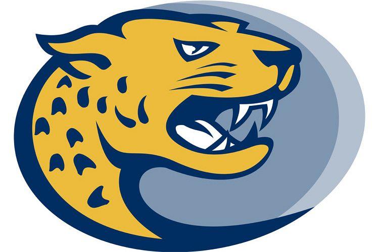 jaguar head facing side example image 1