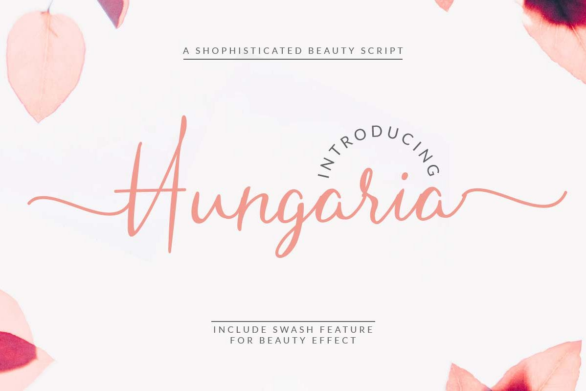 Hungaria - Sophisticated Script Font example image 1