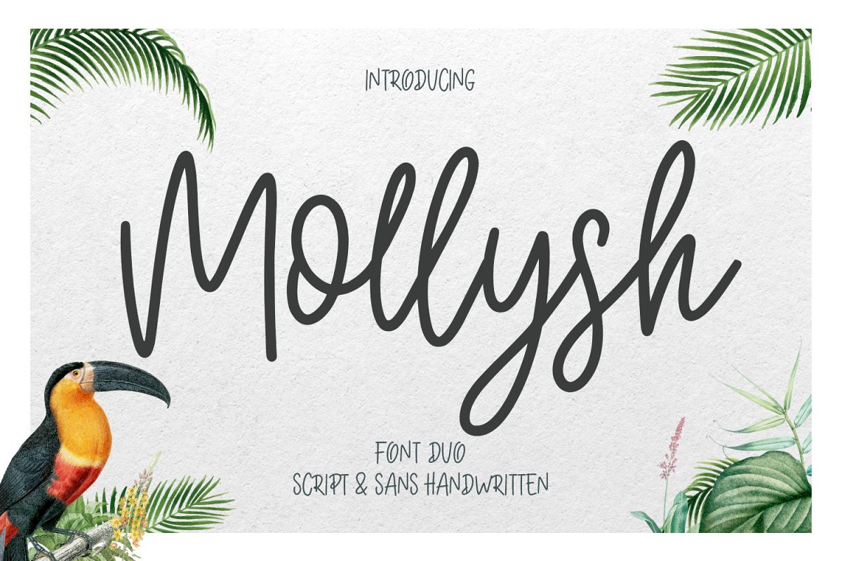Mollysh Calligraphy Font example image 1