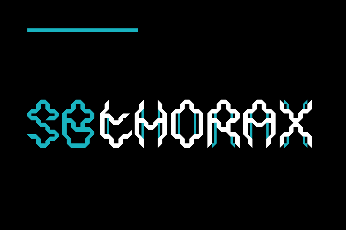 SB Thorax example image 1