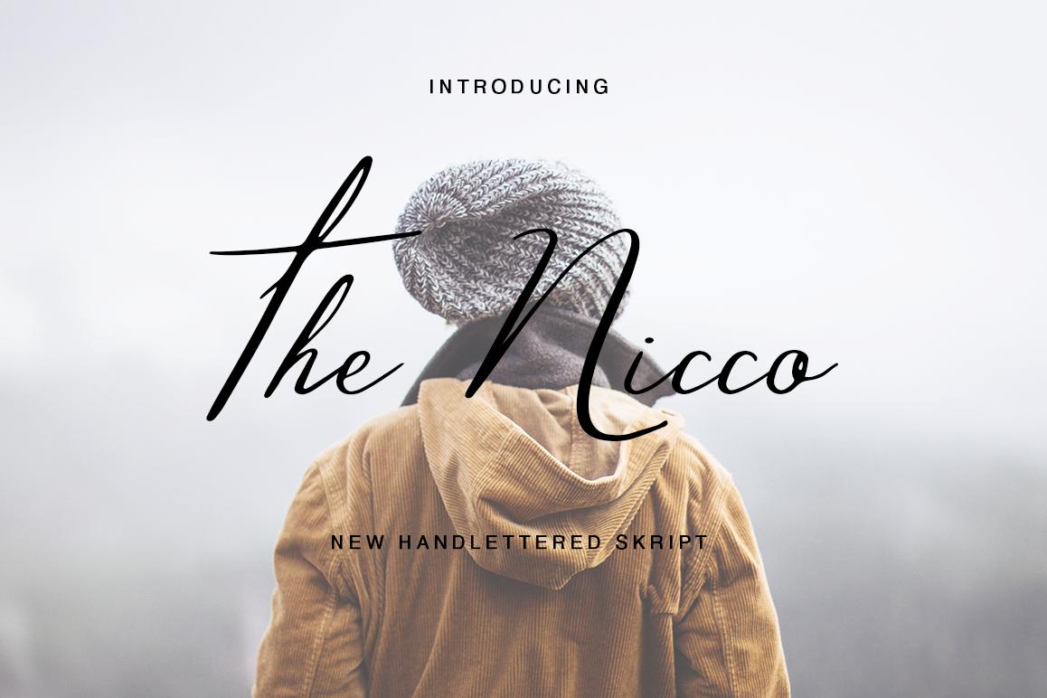 The Nicco example image 1