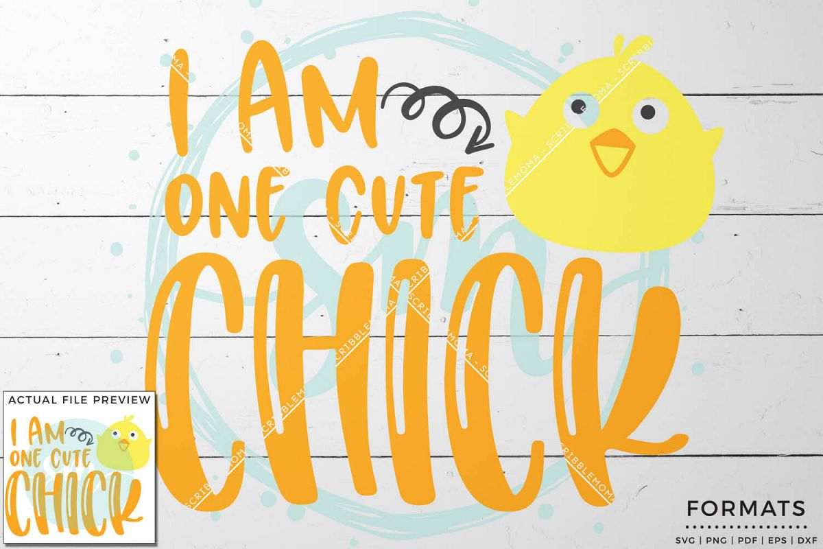 One Cute Chick SVG Files for Cricut example image 1