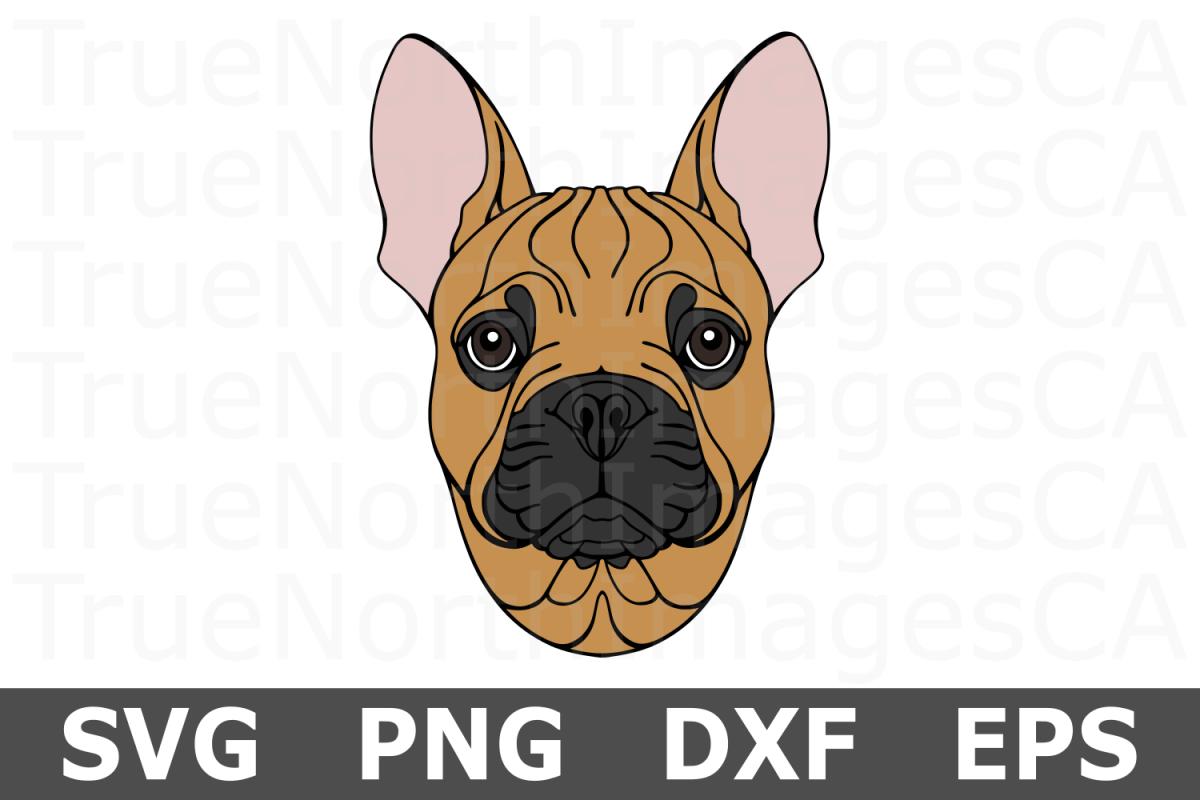 French Bulldog - An Animal SVG Cut File example image 1