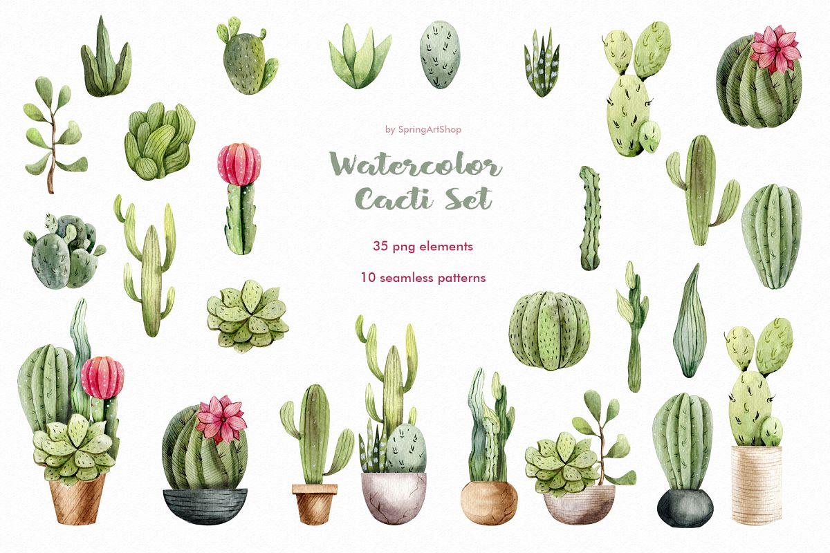 Watercolor Cacti clipart Plants watercolor succulents example image 1