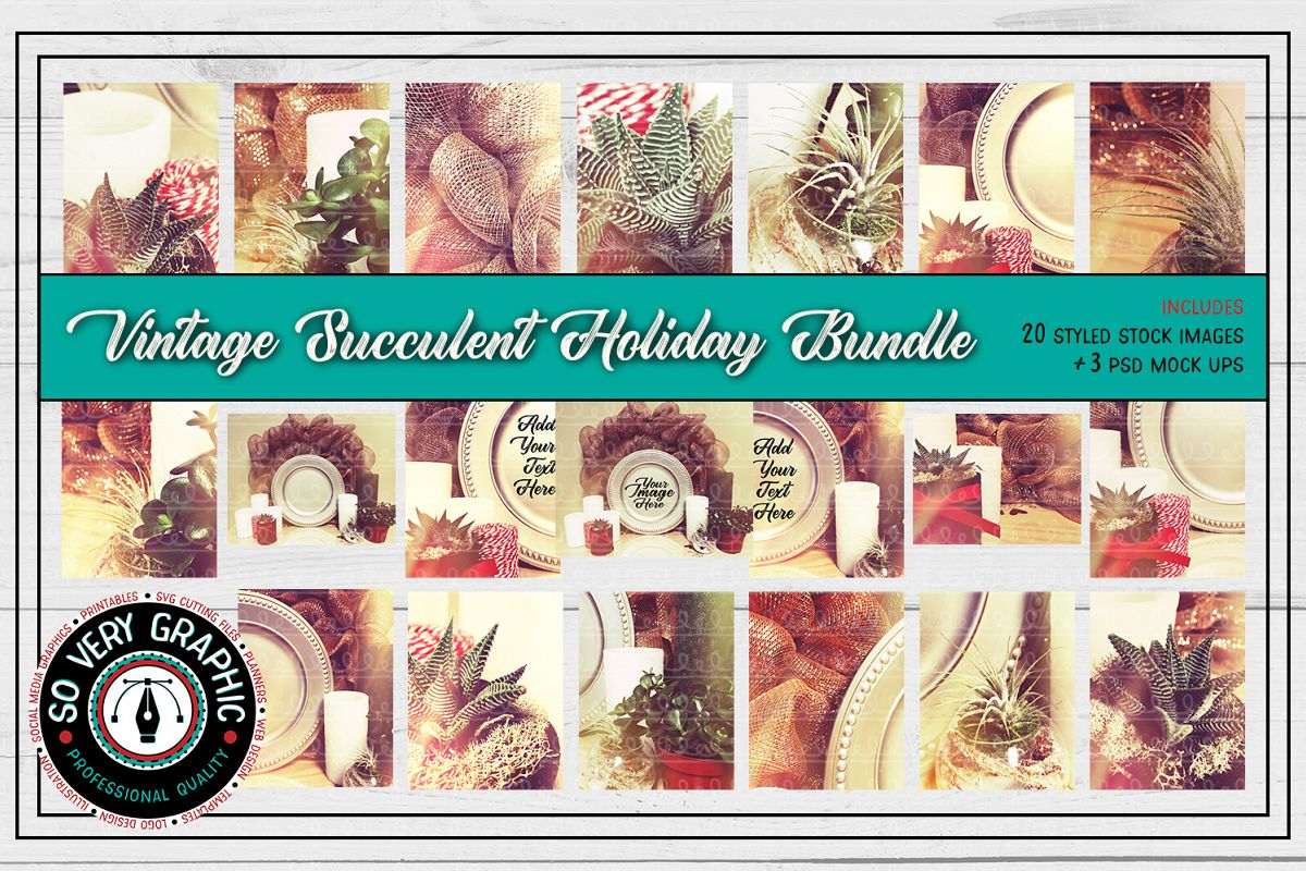 20 Vintage Succulents Holiday Styled Stock   Mock Up Bundle example image 1